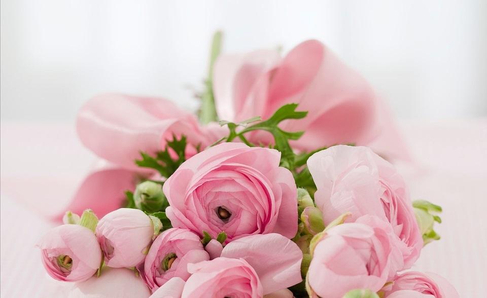 Las Rosas Exóticas Más Bellas Del Mundo Rosas Exóticas